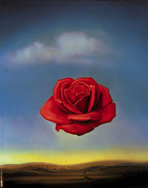 Meditative Rose, Salvador Dali